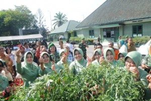 Korem 032/Wbr Panen Perdana Cabe Organik