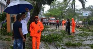 Walikota Padang Mahyeldi Ansharullah, pohon tumbang
