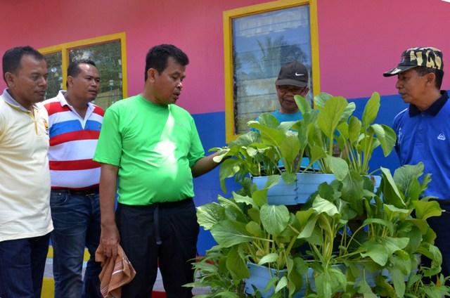 Mukhlis Rahman meninjau paud di desa koto marapak yang mempunyai tanaman yang asri