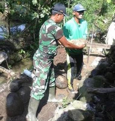 Bintara Pembina Desa (Babinsa) Kodim 0311/Pessel, membantu pembangunan saluran irigasi di wilayah Koramil 03/IV Jurai. Rabu (15/06).
