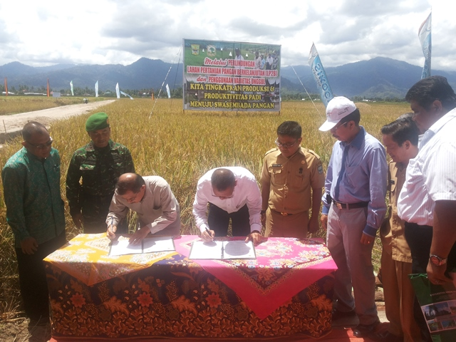Bupati Ali Mukhni dan Rektor Unand Tafdil Husni menandatangan MoU Temu Lapang Pengenalan Varietas Padi di Lokasi persawahan nagari Aia Tajun, Kec.  Lubuk Alung, Senin (22/8).