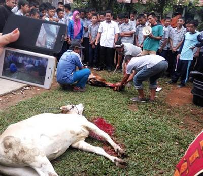 SPM 4 Payakumbuh Adakan Kurban, Bersama Alumni Resmikan Mushalla