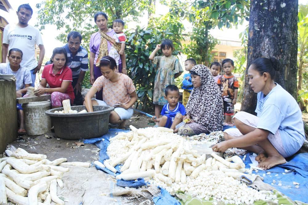 Ibu-ibu pekerja upah pemotong ubi kayu di RT02/RW02, Kelurahan Talang, Kecamatan Payakumbuh Barat, Payakumbuh masih bekerja walau sudah masuk waktu siang.