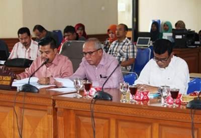 Tim Anggaran Pemerintah Daerah