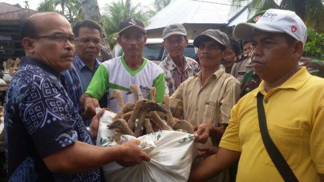 Masyarakat Tanjung Basung II menerima Bantuan bibit itik kepada kelompok tani Hijau Daun, Kamis 8-12-2016