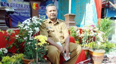 Perjuangan Zulkifli Ishaq, Membudidayakan Bunga Krisan di Kota Solok
