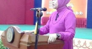 Anggota DPR RI Dr Elviana